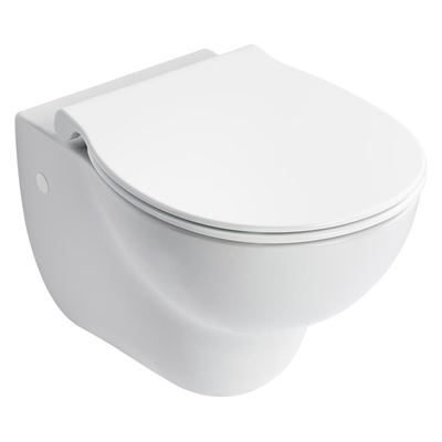 Armitage Shanks Contour 21 rimless wall hung WC toilet pan